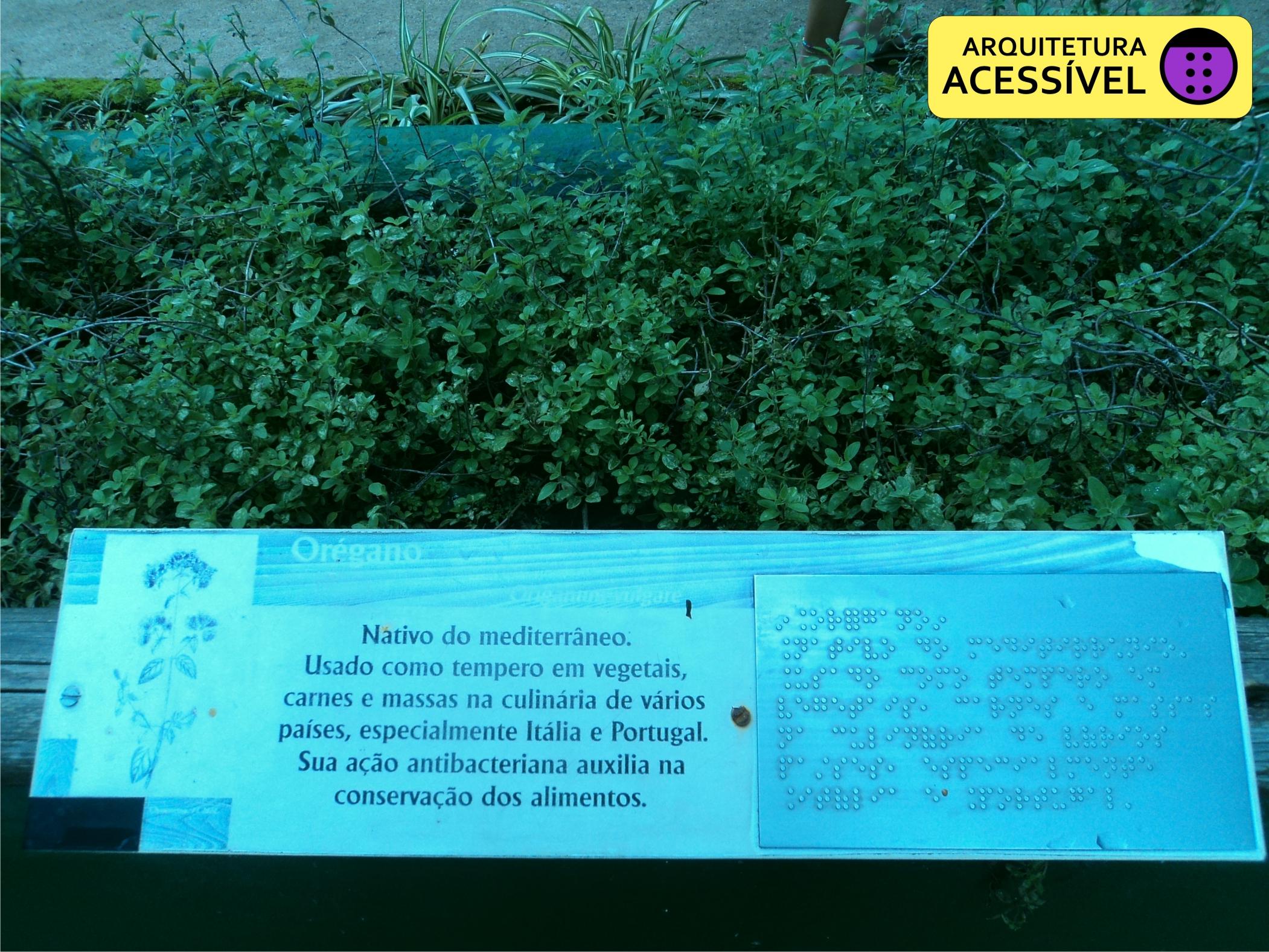 plantas jardim sensorial : plantas jardim sensorial: for ao Jardim Botânico não deixe de conhecer o Jardim Sensorial